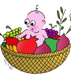 איור תינוק בתוך טנא ביכורים של פירות
