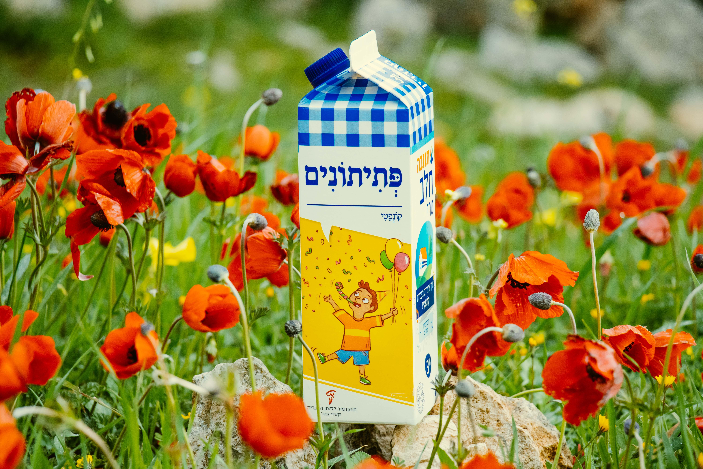 צילום קרטון חלב עם איור מילה מחודשת: קונפטי – פְּתִיתוֹנִים