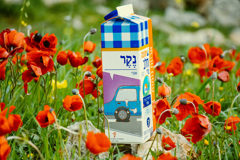 צילום קרטון חלב עם איור מילה מחודשת: פנצ'ר – נֶקֶר