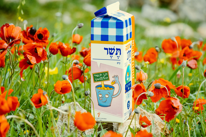 צילום קרטון חלב עם איור מילה מחודשת: טיפ – תֶּשֶׁר