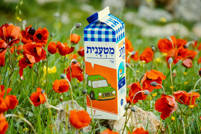 צילום קרטון חלב עם איור מילה מחודשת: טנדר – מִטְעָנִית