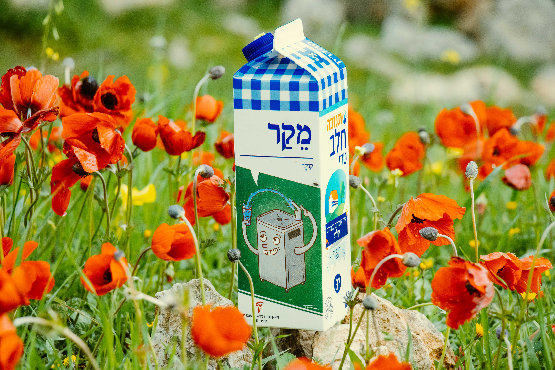 צילום קרטון חלב עם איור מילה מחודשת: קולר (מתקן מים) – מֵקַר