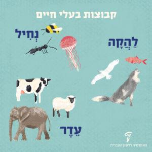 איור בעלי חיים והכיתוב להקה, עדר, נחיל