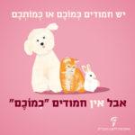 איור של כלב, חתול וארנב. וכיתוב: יש חמודים כמוכם או כמותכם.