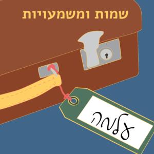 שמות ומשמעויות - מזוודה עם תגית השם עלמה
