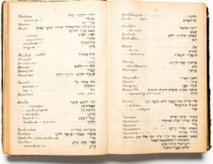 עמודים 130–131 במילון ספרדי–עברי בחיבורו של משה כהן עמאש