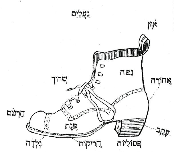 איור חלקי הנעל