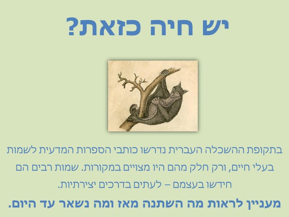 מצגת - שמות בעלי חיים אז והיום העברית החדשה המתגבשת והעברית שלנו היום