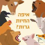 איורים של חיות שונות ובמרכז הכיתוב: איפה החיות גרות?