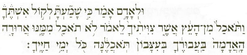 """בראשית ג, יז (באדיבות הוצאת קורן ירושלים בע""""מ)"""