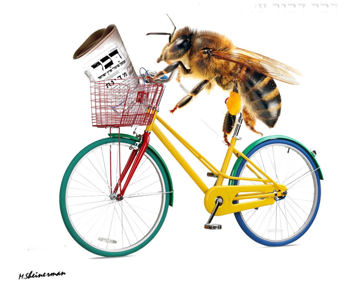 """משה שיינרמן, 64""""דבר דבור על אופניו"""""""