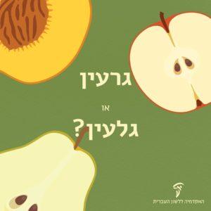 איור של חצאי תפוח, אגס ואפרסק עם הגרעינים והגלעינים והכיתוב גרעין או גלעין?