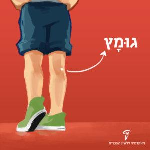 רגליים של ילד צעיר מהחלק הפנימי של הברק יש חץ שכותב: גומץ