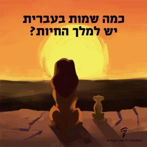 איור של שני אריות מהסרט מלך האריות וכיתוב: כמה שמות בעברית יש למלך החיות?