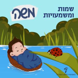 ילד בתוך עריסה, שמות ומשמעויות - משה