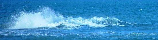 בתמונה: הים