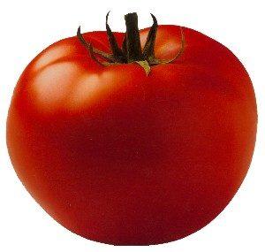צילום עגבנייה