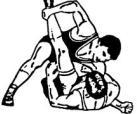הִתְאַבְּקוּת - wrestling