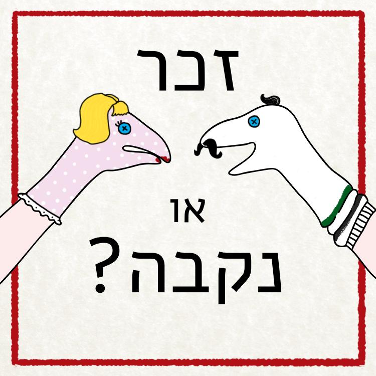 זוג גרביים על ידיים האחד זכר והשנייה נקבה הכיתוב: זכר או נקבה?